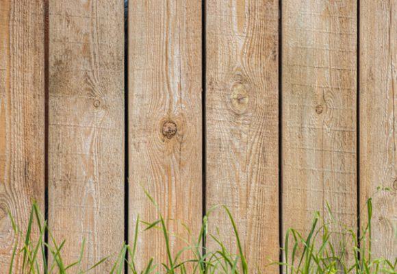 Grasses - Lumber