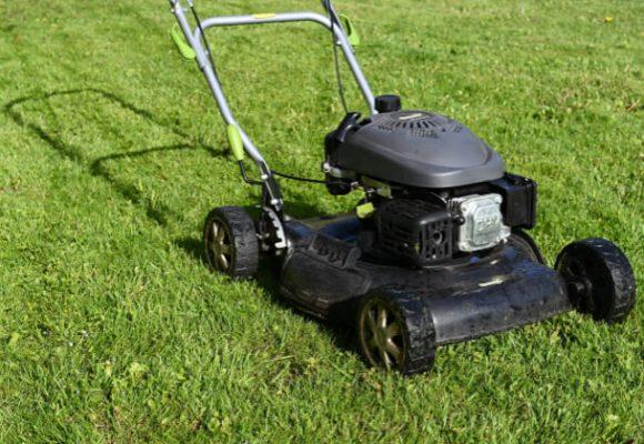Lawn - Allen Outdoor Solutions Inc