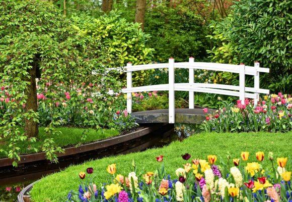 Cropley's Lawn & Garden Center - Landscape design