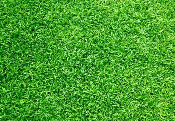 PRO Sprinklers Inc - Lawn